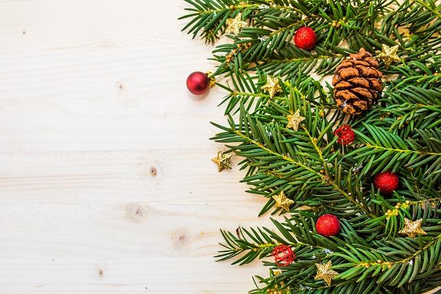 Branches de sapin de Noël et décoration